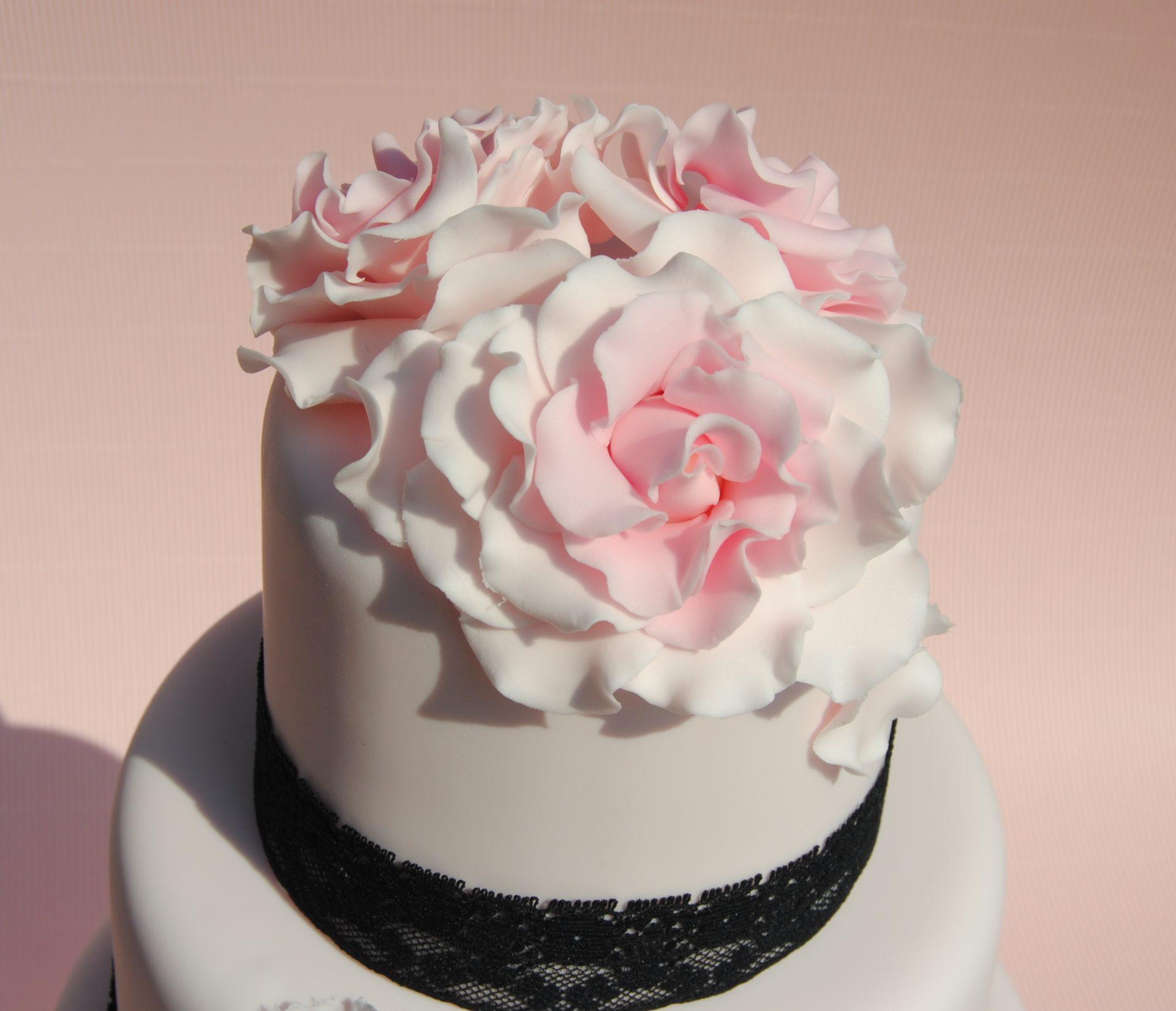 Dawn Mccormick Cakes